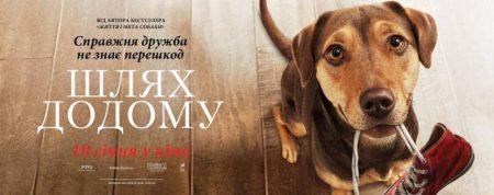 У кінотеатрі в Кропивницькому показ нового драматичного фільму про собаку