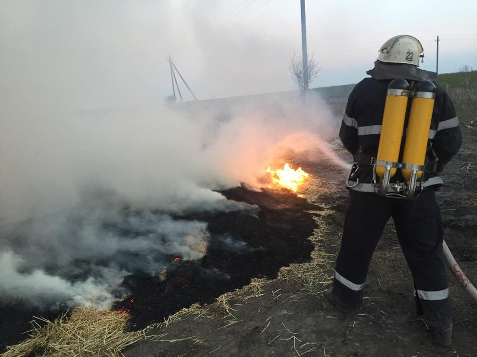 Попри попередження, жителі Кіровоградщини продовжують палити траву - 1 - Життя - Без Купюр