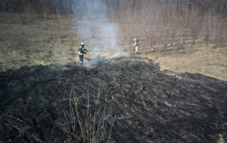 На Кіровоградщині займання сухої трави спричинило значну  пожежу. ФОТО