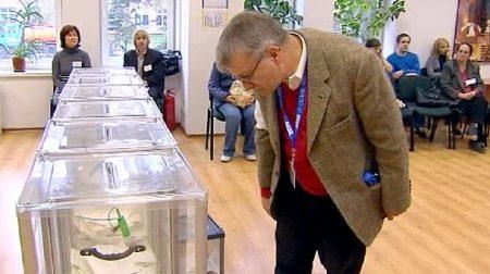 Половина міжнародних спостерігачів на виборах вже прибули в Україну