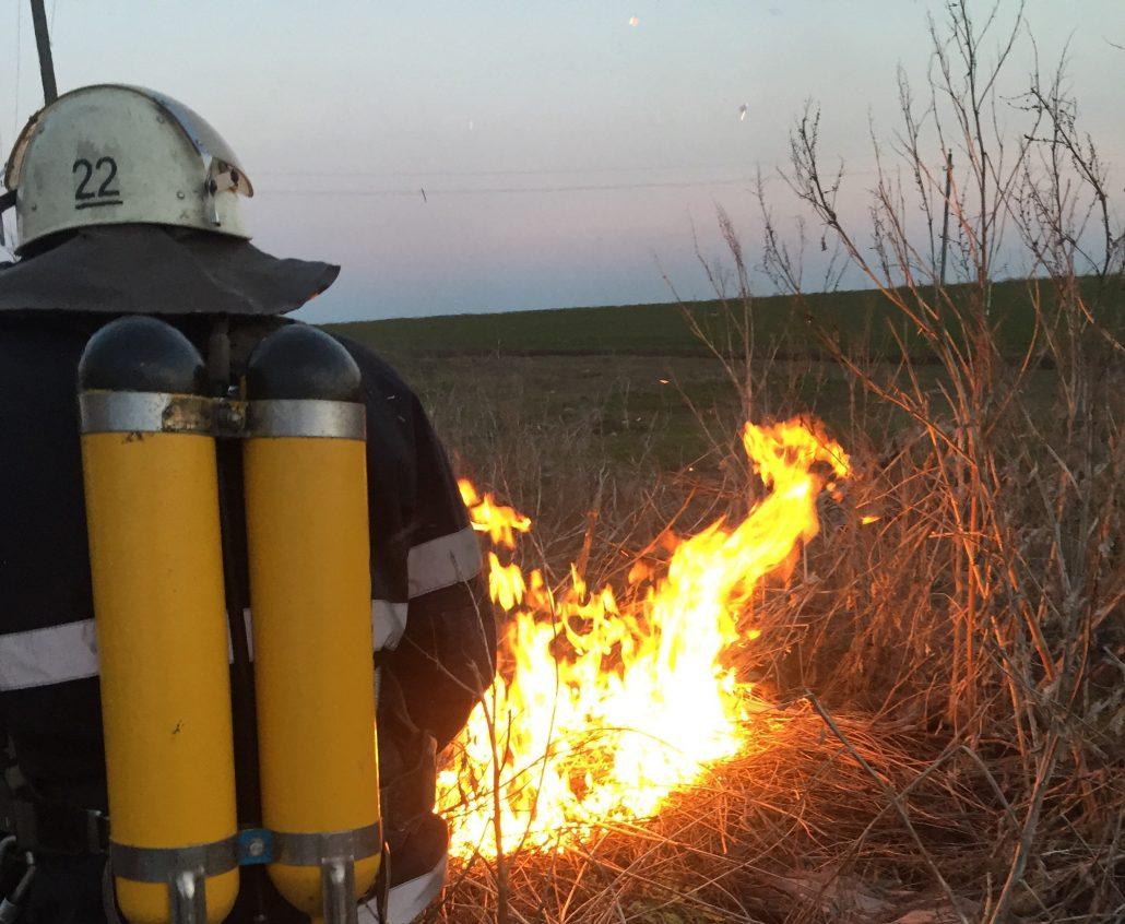 Попри попередження, жителі Кіровоградщини продовжують палити траву - 3 - Життя - Без Купюр
