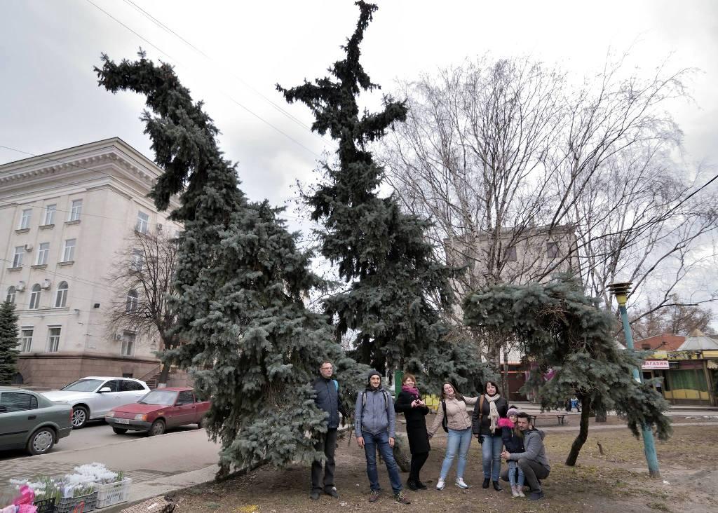 У Кропивницькому фотографувалися біля дерев у Центральному сквері, аби убезпечити їхню вирубку - 3 - Життя - Без Купюр