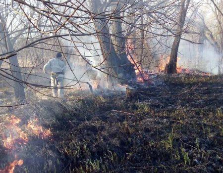 На Кіровоградщині горіла суха трава  на площі 3 га. ФОТО