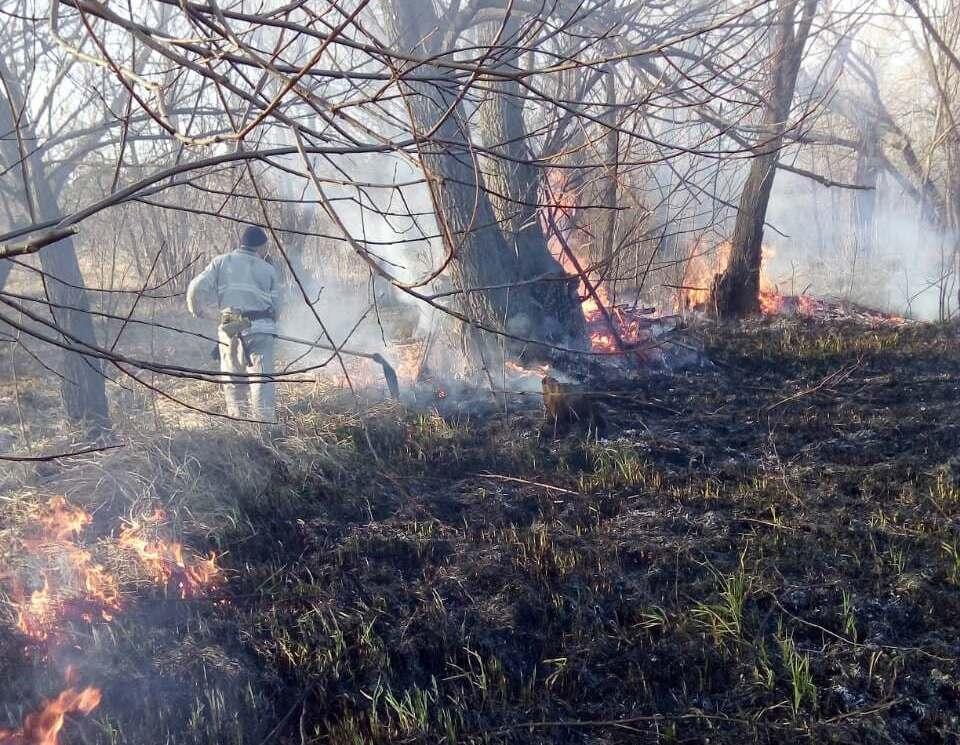 Без Купюр | Події | На Кіровоградщині горіла суха трава  на площі 3 га. ФОТО 3
