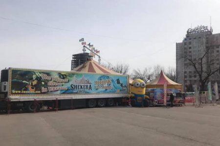 У Кропивницькому заборонять розміщення пересувних цирків з тваринами