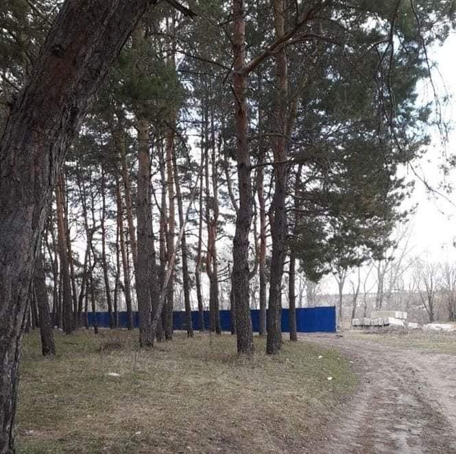 У Кропивницькому вимагають від міської влади мораторію на будівництво у зоні  Лісопаркової - 1 - Життя - Без Купюр