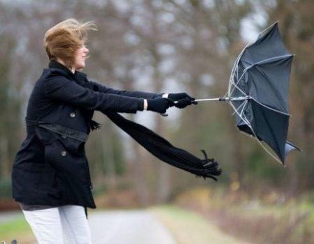 У Кропивницькому та області знову посилення вітру