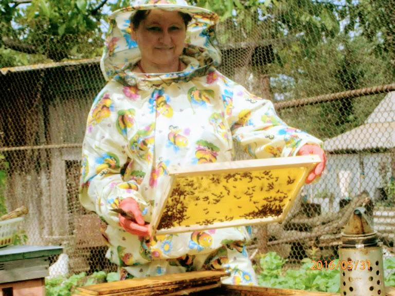 Олена Горобець | Інтерв'ю | Про бджіл, страхи, стереотипи і жіночу солідарність. ФОТО 8