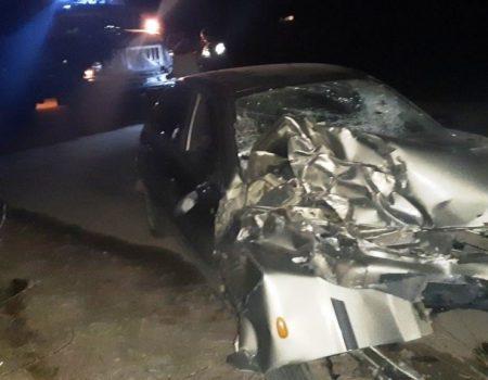 На Кіровоградщині авто злетіло в кювет, водій загинув. ФОТО