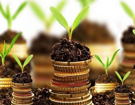 У Кропивницькому очікують політичної волі для скасування нової нормативної грошової оцінки землі
