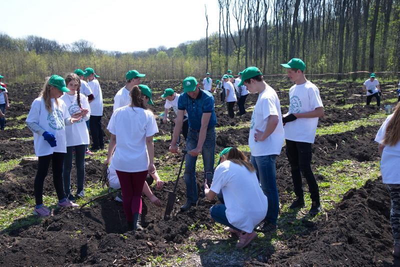 На Кіровоградщині висадили 3 тисячі саджанців дуба. ФОТО - 2 - Життя - Без Купюр