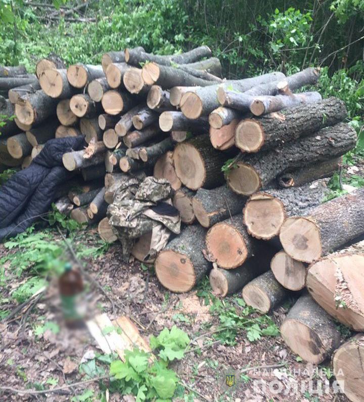 """У Новоукраїнському районі місцеві жителі """"заробили"""" на дровах до 5 років - 2 - Кримінал - Без Купюр"""