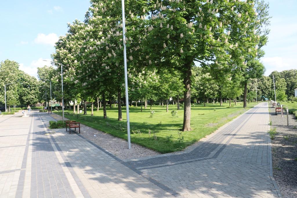 Без МАФів на клумбах і дерев-обрубків: у Новомиргороді зробили європейський парк. ФОТО - 3 - Децентралізація - Без Купюр