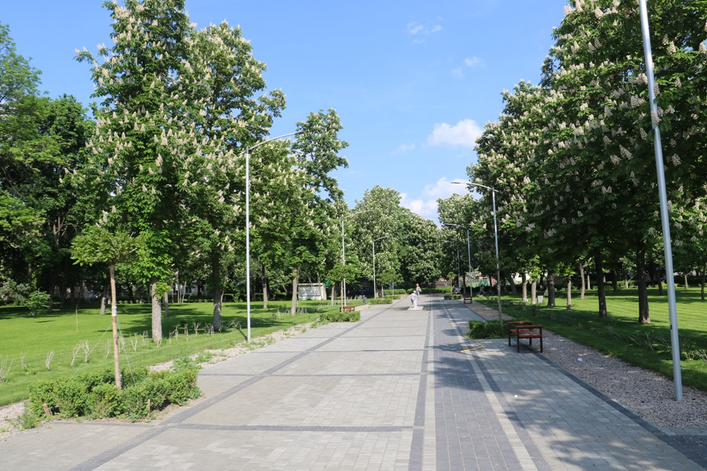 Без МАФів на клумбах і дерев-обрубків: у Новомиргороді зробили європейський парк. ФОТО - 5 - Децентралізація - Без Купюр