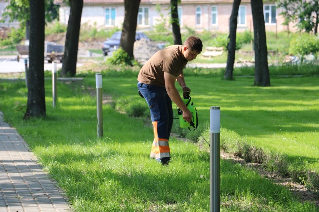 Без МАФів на клумбах і дерев-обрубків: у Новомиргороді зробили європейський парк. ФОТО - 8 - Децентралізація - Без Купюр