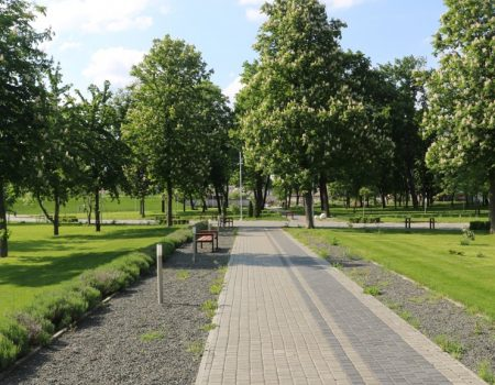Без МАФів на клумбах і дерев-обрубків: у Новомиргороді зробили європейський парк. ФОТО