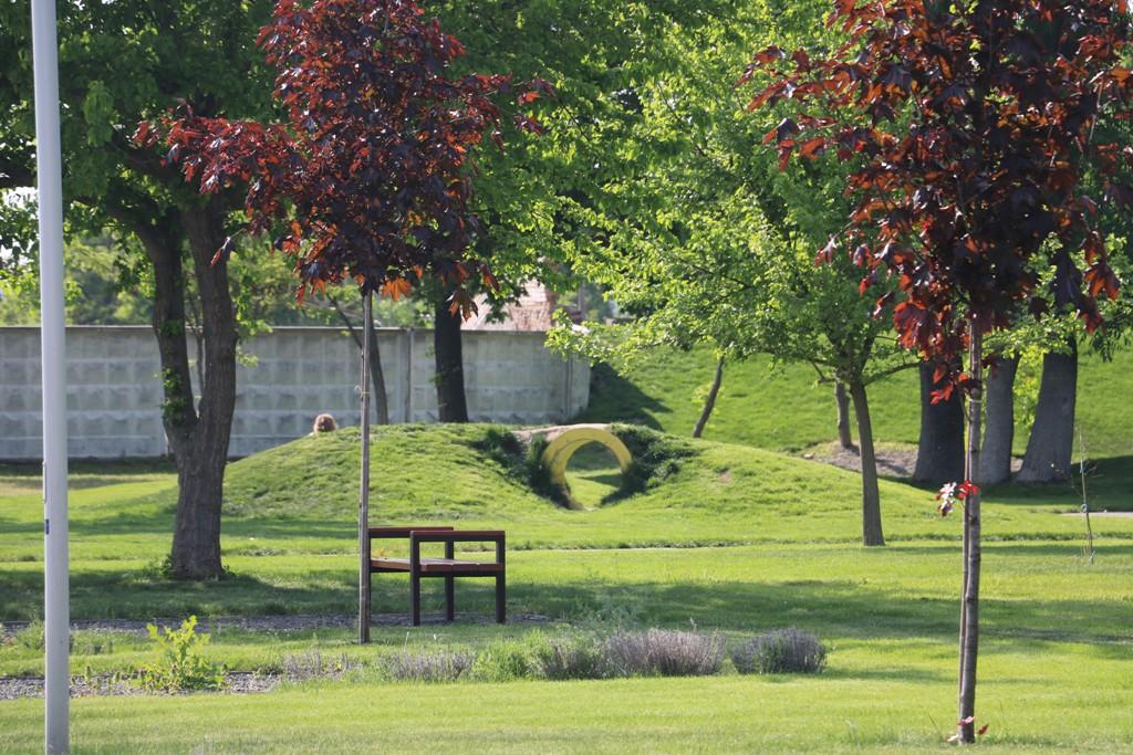 Без МАФів на клумбах і дерев-обрубків: у Новомиргороді зробили європейський парк. ФОТО - 12 - Децентралізація - Без Купюр