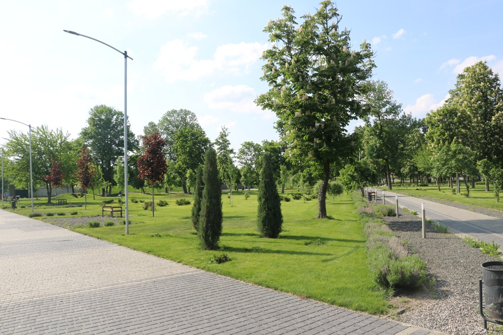 Без МАФів на клумбах і дерев-обрубків: у Новомиргороді зробили європейський парк. ФОТО - 13 - Децентралізація - Без Купюр