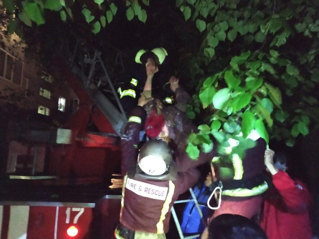 У Світловодську пожежним вдалося врятувати пенсіонерку,  38-річний чоловік загинув. ФОТО - 3 - Події - Без Купюр