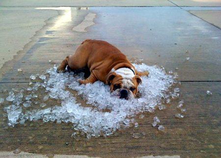 Синоптики розповіли, коли в Україні почне спадати спека