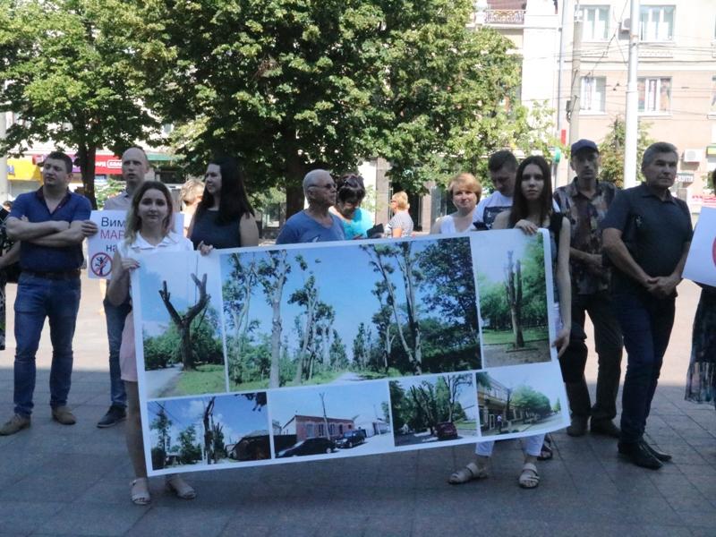 Без Купюр У Кропивницькому містяни вимагають прийняти мораторій на обрізку дерев. ФОТО Події  Кропивницький знищення дерев еко-активісти