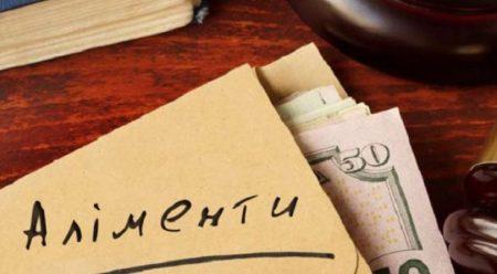 На Кіровоградщині через борг із аліментів у чоловіка готуються забрати будинок