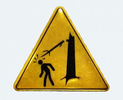 На Кіровоградщині попередили загрозу від аварійних дерев