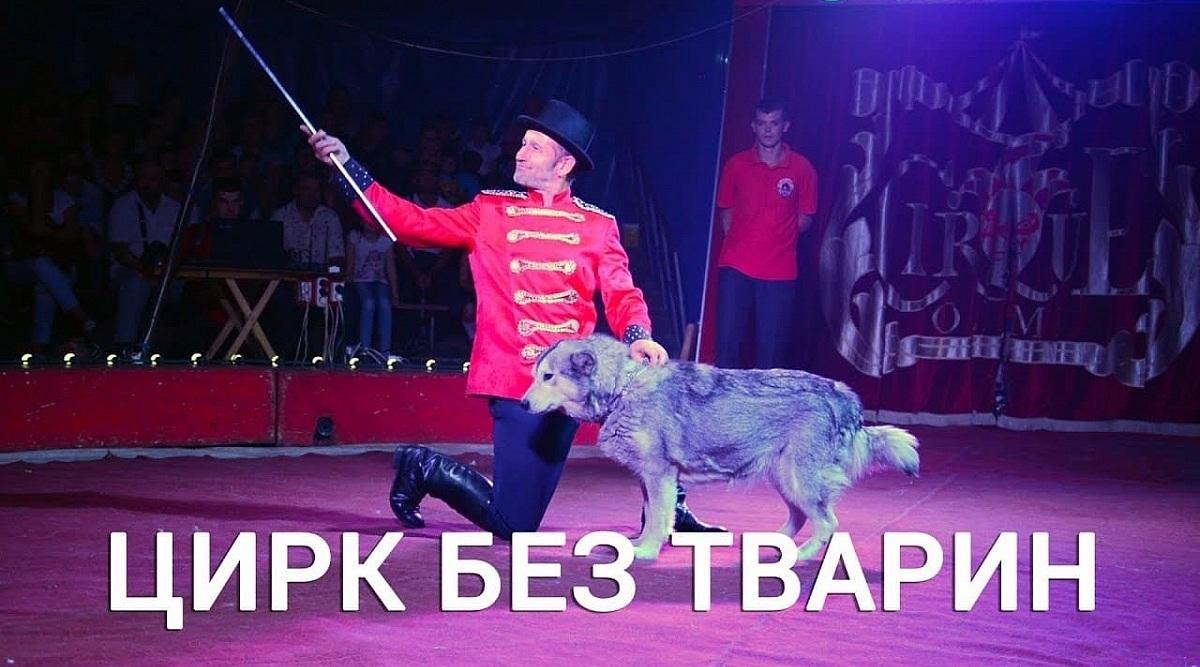 Міська влада Кропивницького заборонила цирку продаж квитків через використання в програмі тварин - 1 - Життя - Без Купюр
