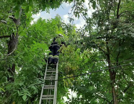 На Кіровоградщині рятувальники ліквідовують наслідки негоди