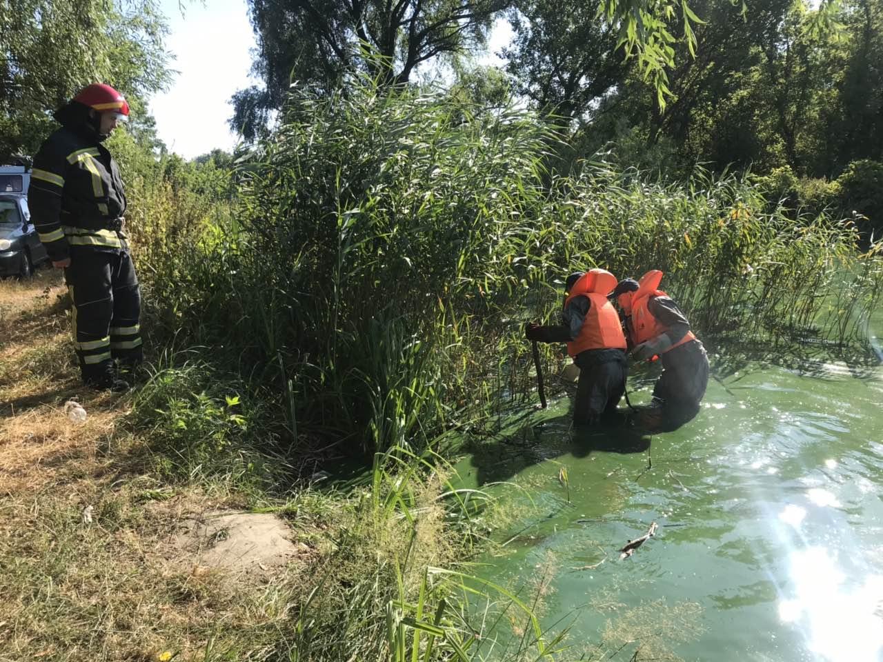 На Кіровоградщині чоловік потонув у ставку - 2 - Події - Без Купюр