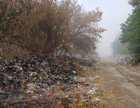 Біля Смоліного горіло 5 гектарів сміття, люди тиждень скаржаться на дим і сморід. ФОТО. ВІДЕО
