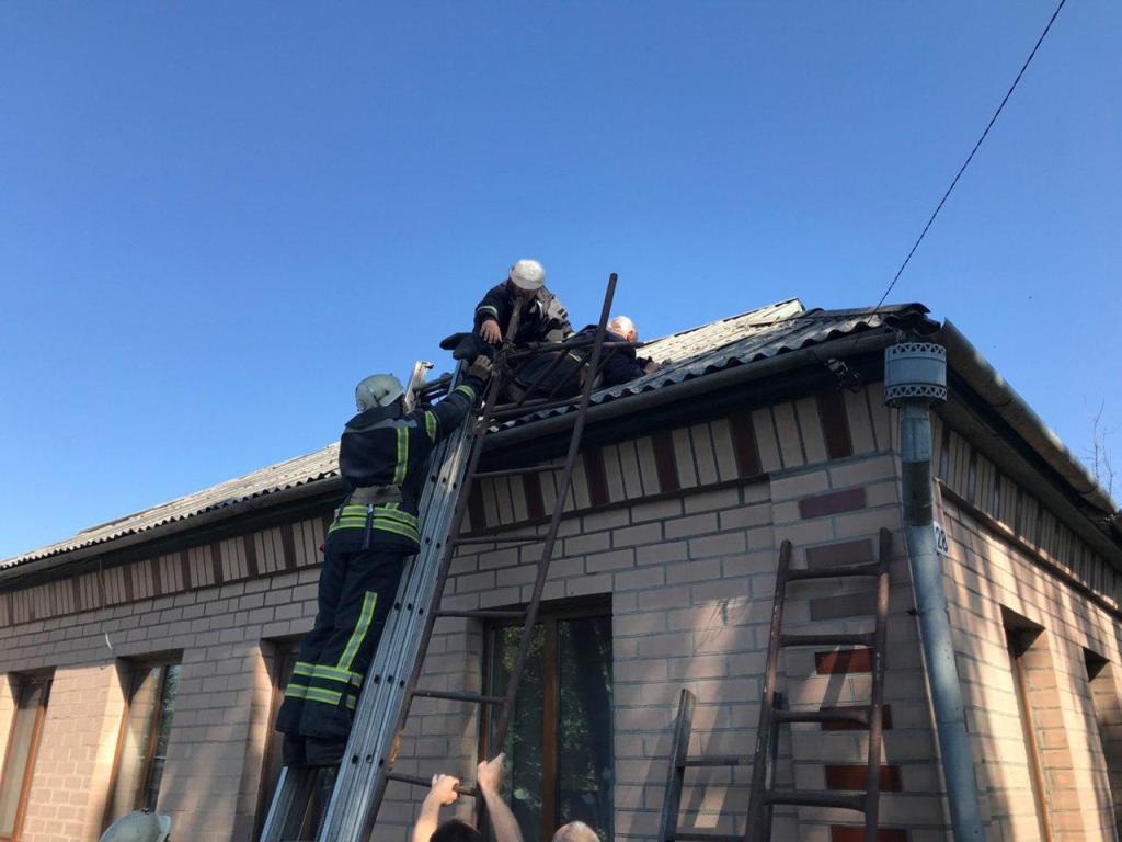 Кіровоградщина: рятувальники зняли з даху будинку місцевого мешканця. ФОТО - 1 - Події - Без Купюр