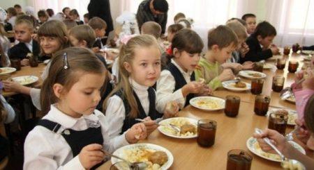 Кропивницький: учні початкових класів пільгових категорій безкоштовно харчуватимуться тільки в першій чверті