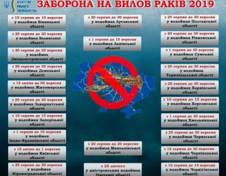 Очільниця Кіровоградської РДА через суд домоглася скасування штрафу