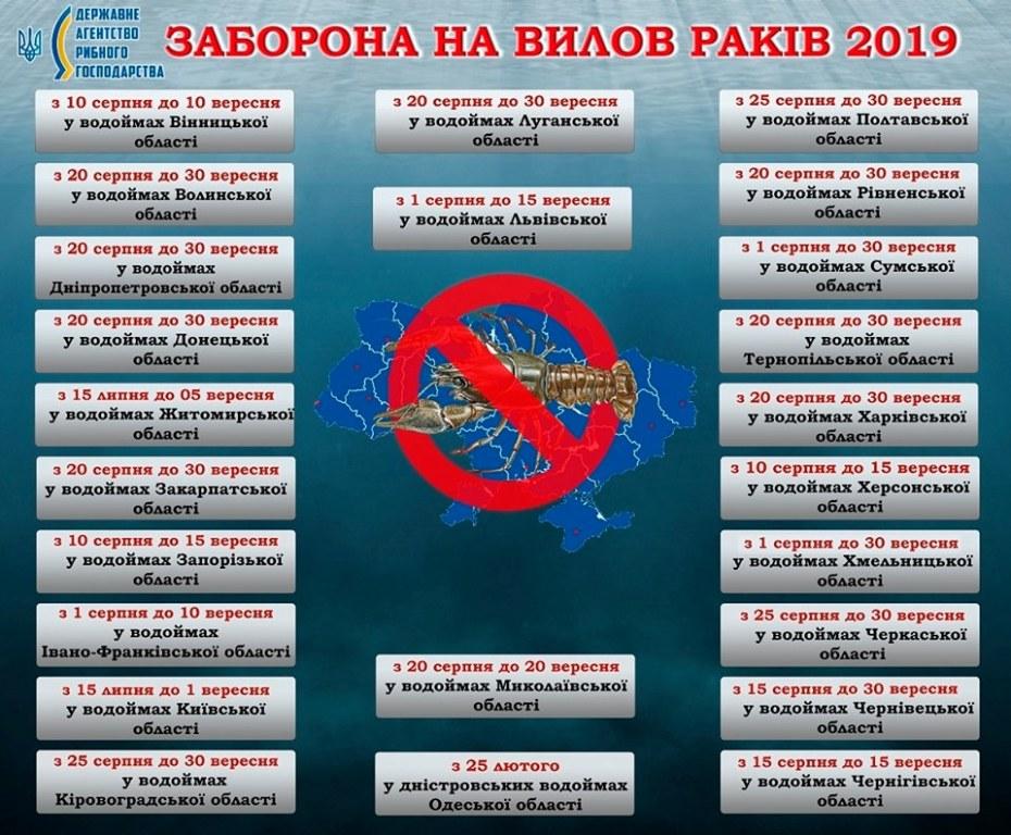 На Кіровоградщині встановили заборону на вилов раків - 1 - Життя - Без Купюр