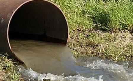 У Кропивницькому працівник водоканалу зливав нечистоти у лісосмузі