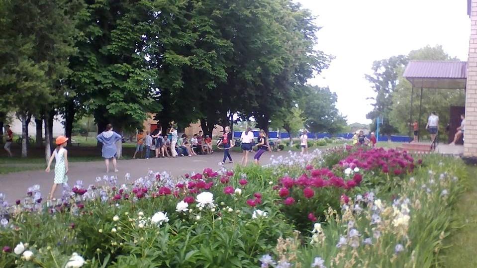 Учнів з Тишківської школи Добровеличківського району перевели до інших закладів - 1 - Освіта - Без Купюр