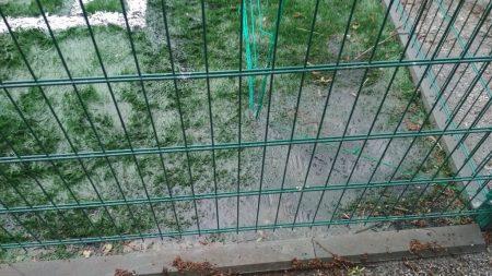 Поліція перевіряє, чи було розкрадання грошей при будівництві спортмайданчика у Новгородці