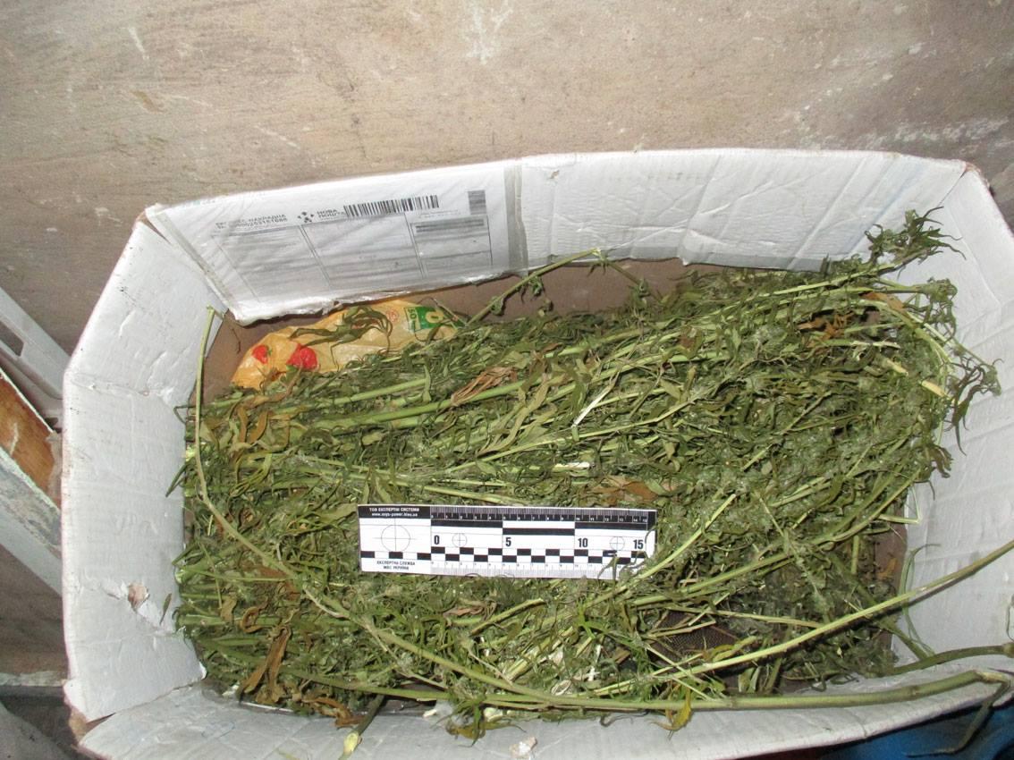 Без Купюр У мешканця Добровеличківського району поліцейські вилучили наркотичні засоби Кримінал  покарання наркотики