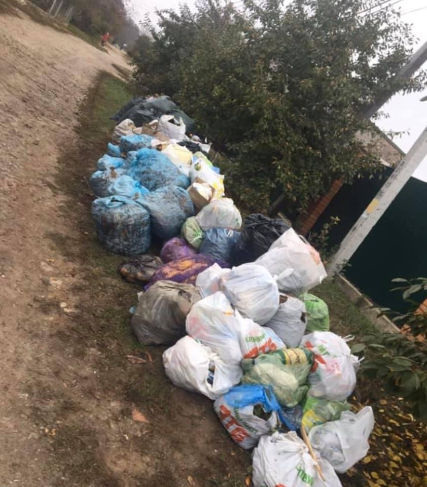 """Без Купюр """"Екостайл"""" відстає від графіка вивезення сміття через опале листя. ФОТО Життя  сміття Екостайл графік відставання"""