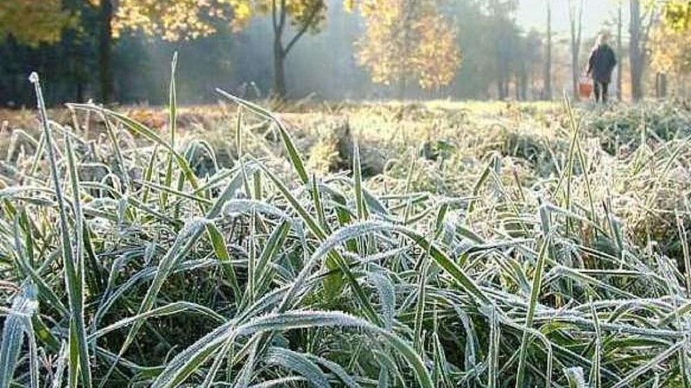 Без Купюр Синоптики попереджають про заморозки Погода  Укргідрометцентр заморозки