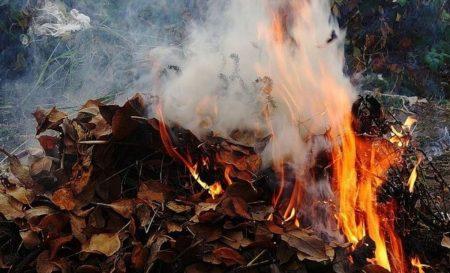 У трьох найбільших містах Кіровоградщини значно погіршився стан повітря через спалювання листя