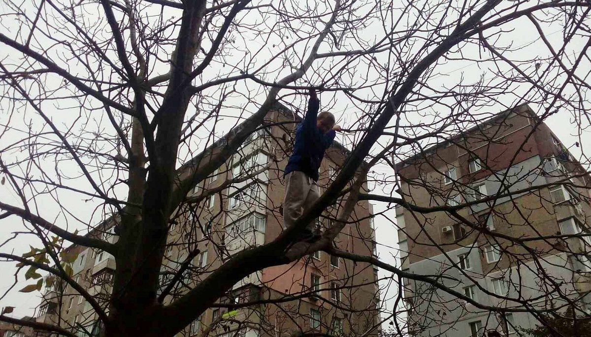 Без Купюр У Кропивницькому рятувальникам довелося знімати з дерева 10-річного хлопчика Життя  рятувальники Кропивницький ДСНС viber