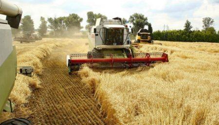 Хлібороби Кіровоградщини намолотили рекордну кількість зернових культур