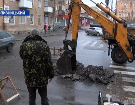 """У Кропивницькому збирають підписи за """"цирк без тварин"""""""
