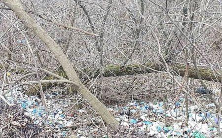 У Кропивницькому утворили стихійне сміттєзвалище