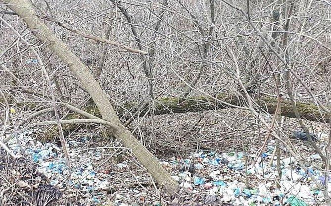 Без Купюр У Кропивницькому утворили стихійне сміттєзвалище Життя  несанкціоноване сміттєзвалище Кропивницький 2020 рік