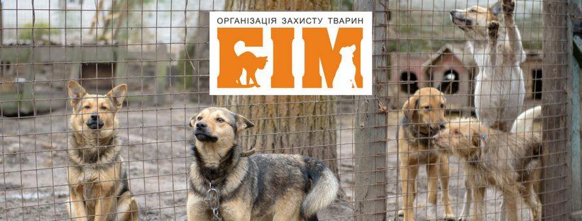 Без Купюр Кропивничани просять фінансувати з міського бюджету притулок для тварин Життя  петиція організація БІМ Кропивницький 2020 рік