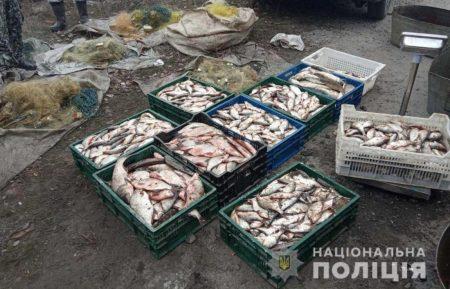 У Світловодську викрили браконьєрів, які незаконно виловили риби на майже 200 тисяч