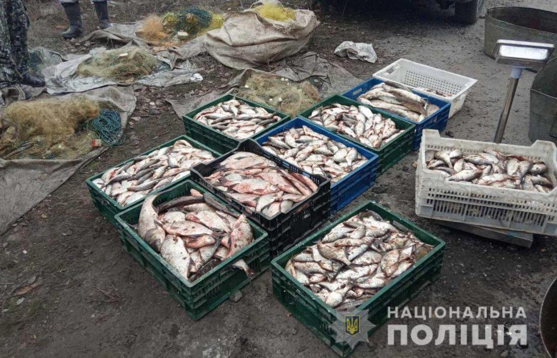 Без Купюр У Світловодську викрили браконьєрів, які незаконно виловили риби на майже 200 тисяч Кримінал  Світловодський відділ поліції вилучення риби браконьєрство 2020 рік
